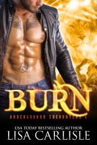 Book Cover: BURN(a shifter / vampire 80s rockstar romance)