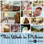 This Week in Pictures (TWiP) at Polka Dot Cottage