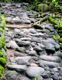Trail To Trois Cascades