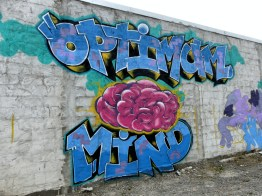 ChCh - Optimum Mind