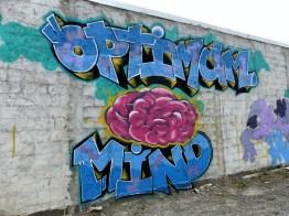ChCh - Optimum Mind