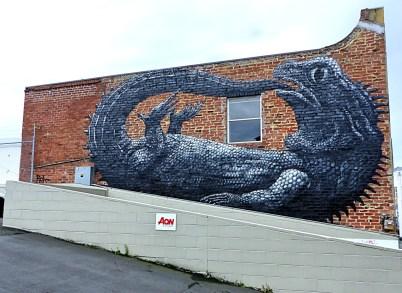 Dunedin - Roa