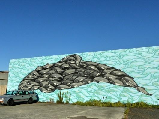 Maui Dolphin - Auckland - BMD