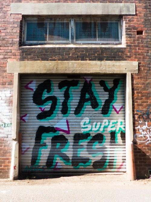 Street Art - Newcastle - October 2015 - Alley Near Hunter - Unknown