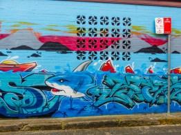 Newtown - Shark
