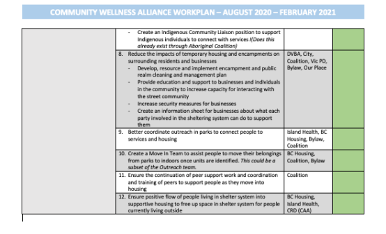 Community Wellness Alliance Decampment working group work plan.