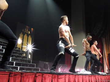 A 2014 Move Live On Tour Reflection with Derek Hough And Julianne Hough by LisaKayPhotography 37