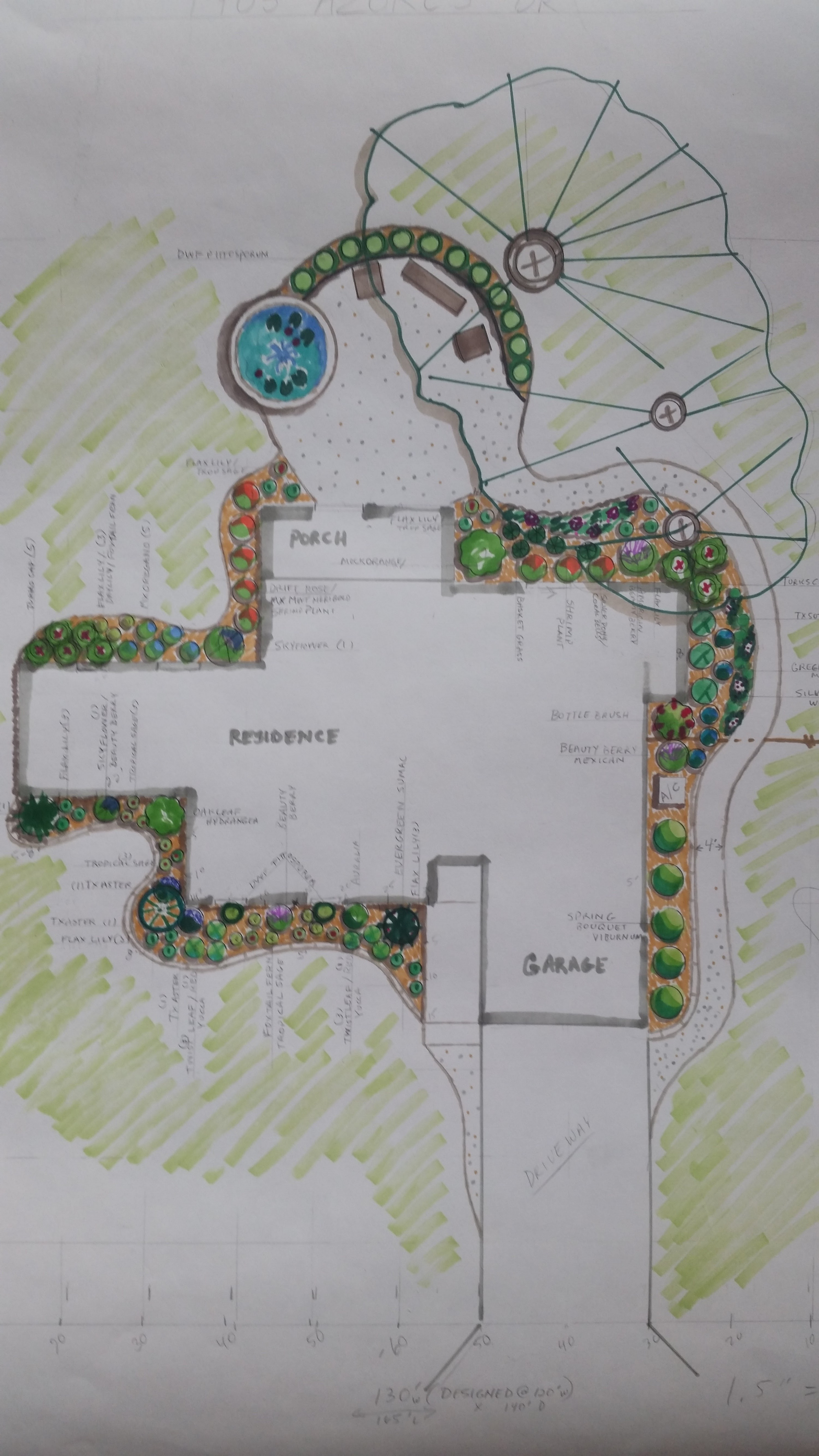 Landscape and Xeriscape Design, Austin Texas | Lisa's ...
