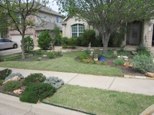Here is a really cool alternative with Buffalo Grass and native and adapted plants.