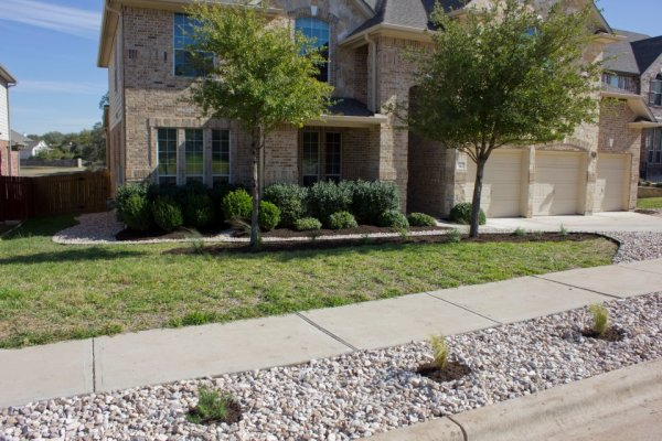 A friendly compromise of sod and stone, plants and home.
