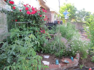 Edible garden. Delicious as it is beautiful.