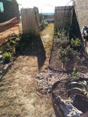 soil amendement after construction, Lisa's landscape austin