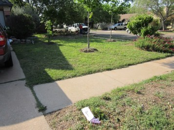 Before, this space was poorly planned and difficult to mow and water.