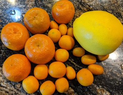 Oranges and kumquats