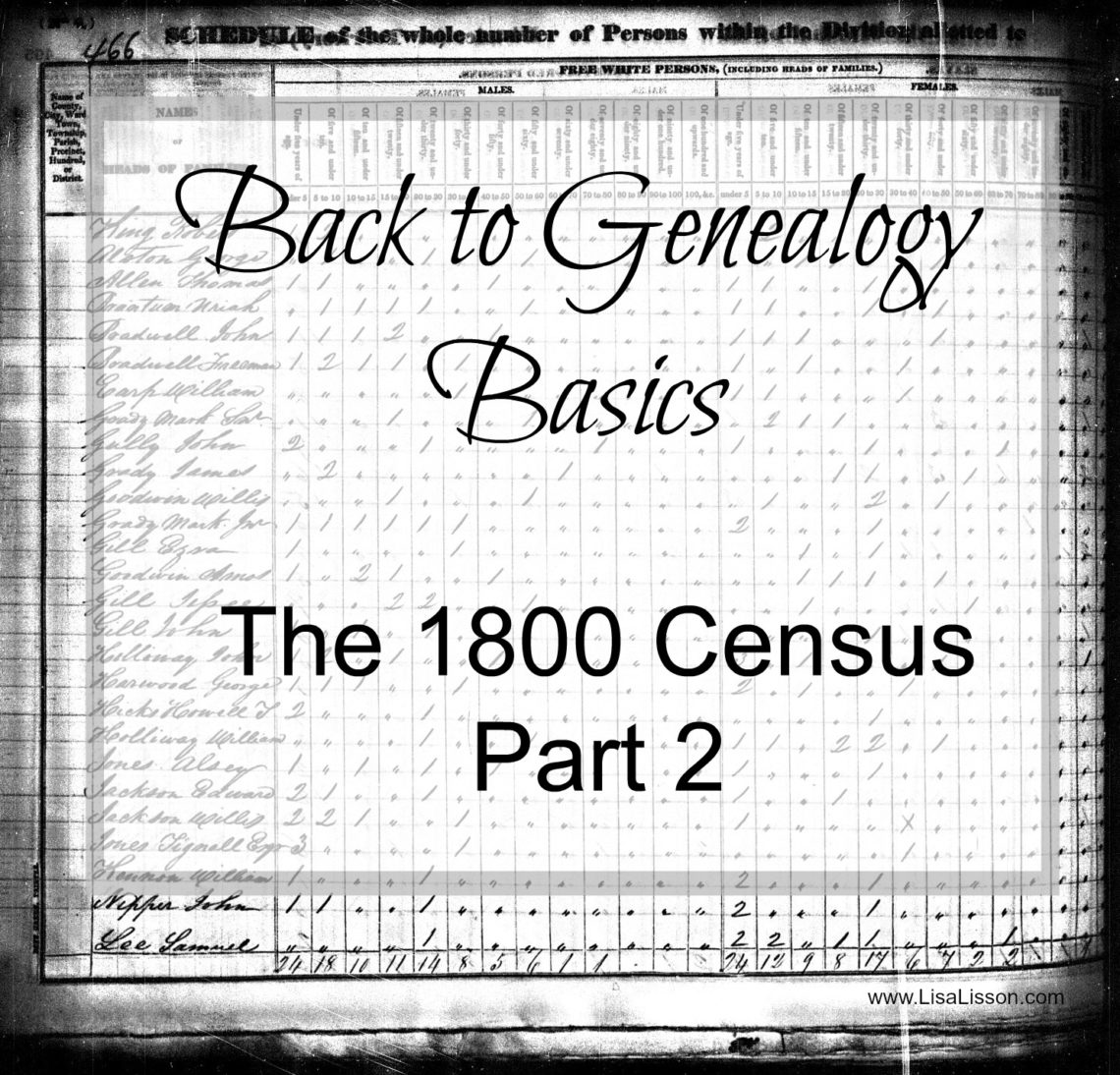 Census records in the early 1800s are difficult to assess. Only the head of the household was listed and the rest of the household was just a lot of tick marks. What's a genealogist to do?