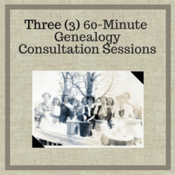Three 60 Minute Genealogy Consultation Sessions