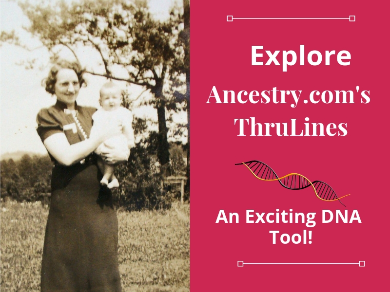 Thrulines is an exciting new Ancestry.com DNA tool. Use ThruLines to find clues to how you may be related to your DNA matches. Learn more in this short video. #genealogy #ancestry #DNA