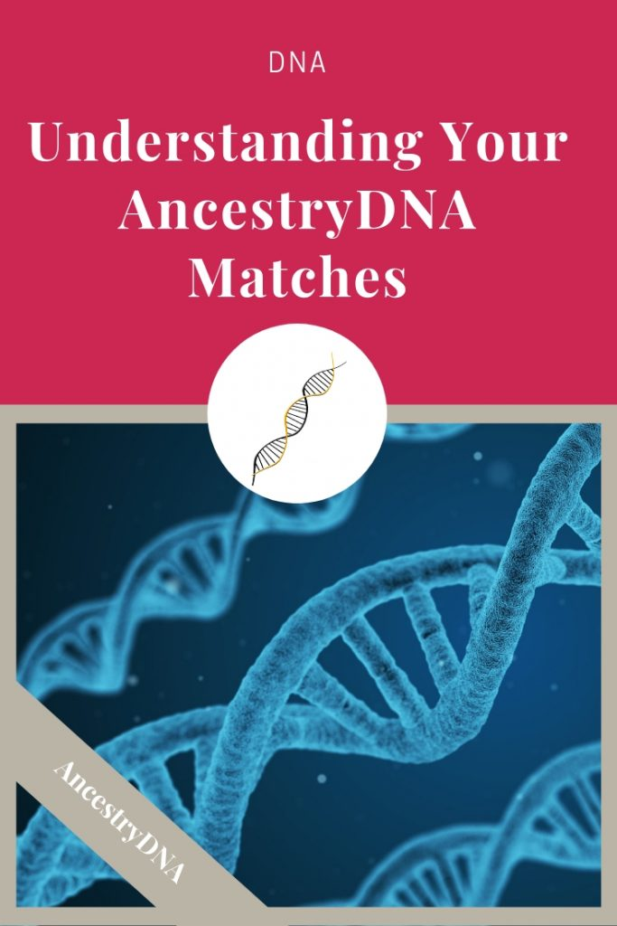 You've tested your DNA and gotten your results. Now what? Learn how to understand your AncestryDNA matches and how those matches benefit your genealogy research. #genealogy #DNA #ancestors