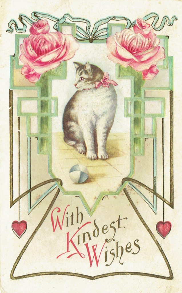 1915 Cat Postcard - Transcribing old documents