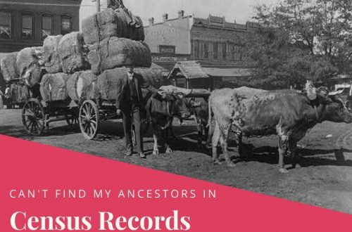 Having trouble finding your ancestor in the census records? Try these alternate genealogy records!