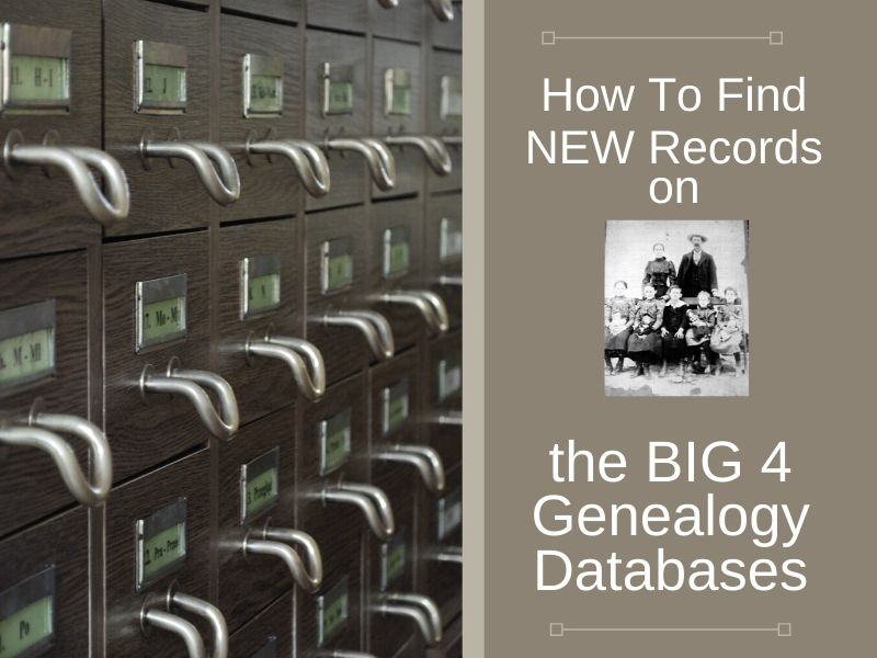 Don't miss out on potential clues to your ancestors! Learn how to find the newly added record additions on the main genealogy databases.