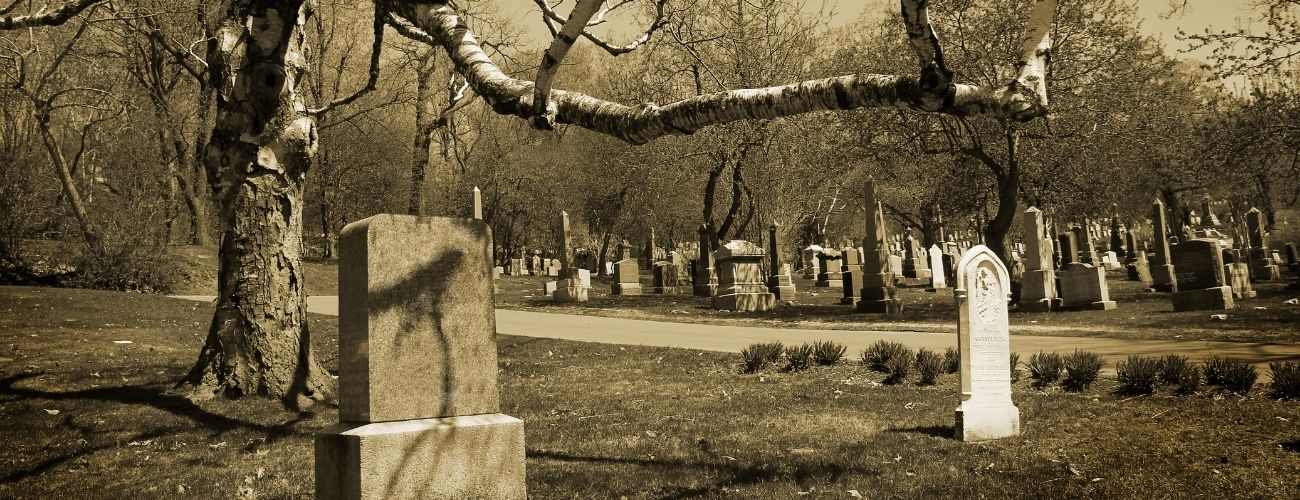 cemetery with low tree