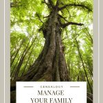 Large leafy green tree with big roots and Black text reading Manage your family tree