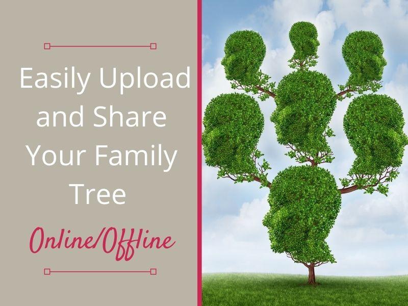 Pedigree tree with leafy head profiles