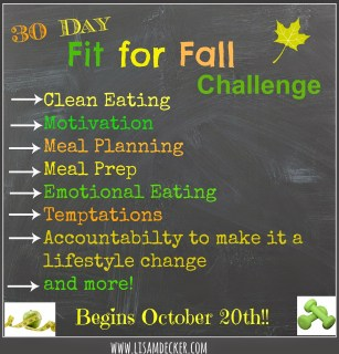 Fit for Fall Challenge, Health and Fitness Accountability Groups