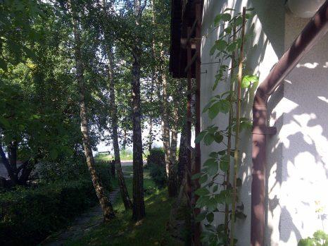 Bobrowo-20110712-00428