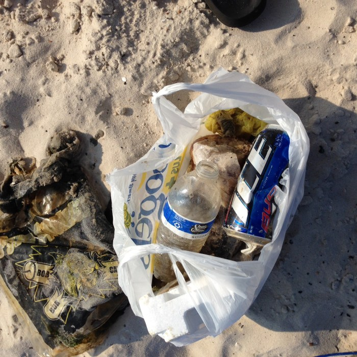 Trash I picked up from the water between Ramaneda and Washington Street. Beer cans, plastic bags, water bottles.