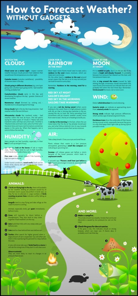 InfographicsExamplesofTeachingbyShowingTipsforStudent_4dcaf7741a08d-640x1366