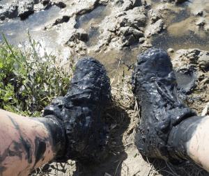 mucky boots