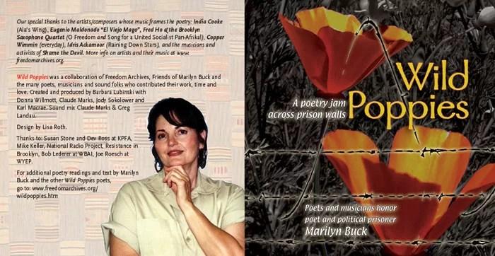 wild-poppies-CD-web