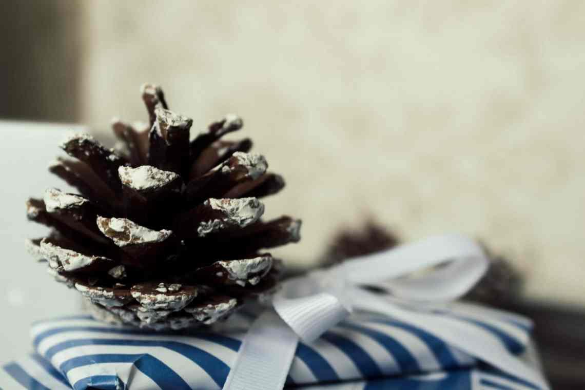 gesunde_sportliche_weihnachtsgeschenkideen_abnehmen1-14