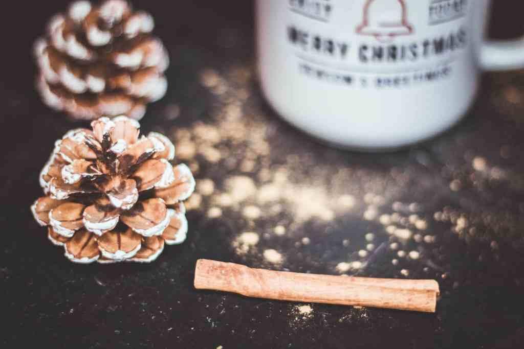Abnehmen an Weihnachten - so funktioniert es an den Feiertagen ohne Extra-Kilos