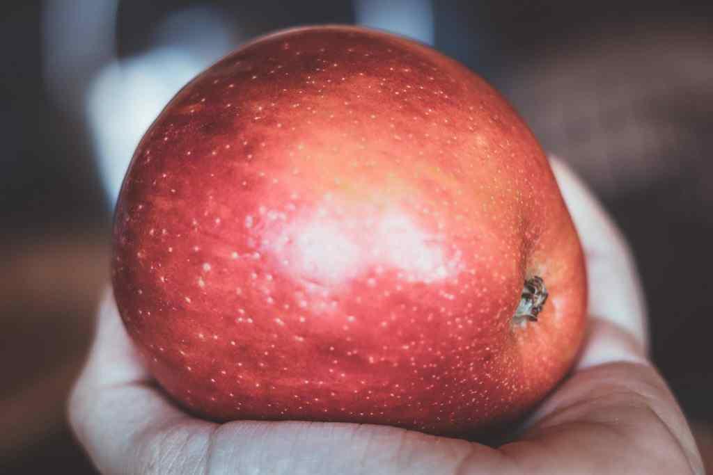 Abnehmen mit Obst - der große Kalorienvergleich. Darum ist es sinnvoll mit Obst Gewicht zu verlieren.