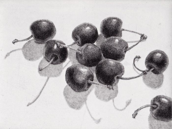 Prints Cherries Stems Shadows Etching