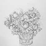 Anemones Drawing