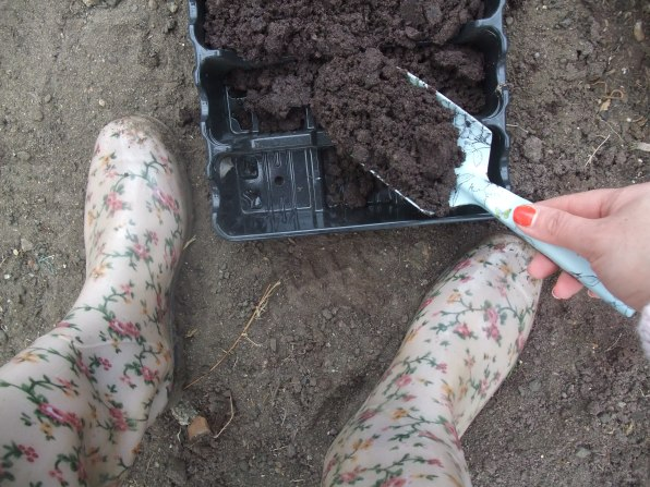 Filling a tray with compost