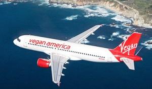 ColleenHolland.VeganAmericaAirplane