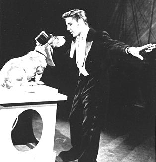elvispresley-hounddog-steve-allen-show-july-1-19562