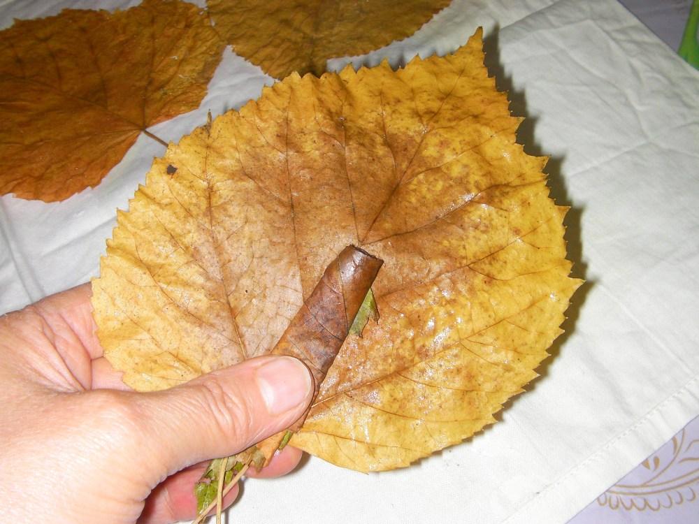 autunno: con le foglie...rose fai da te   (6/6)