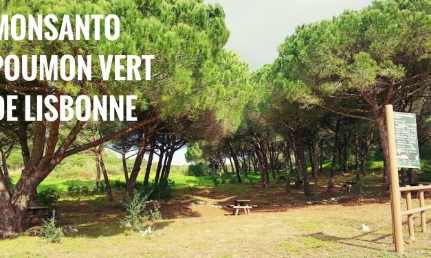 Découvrir le parc Monsanto, poumon vert de Lisbonne