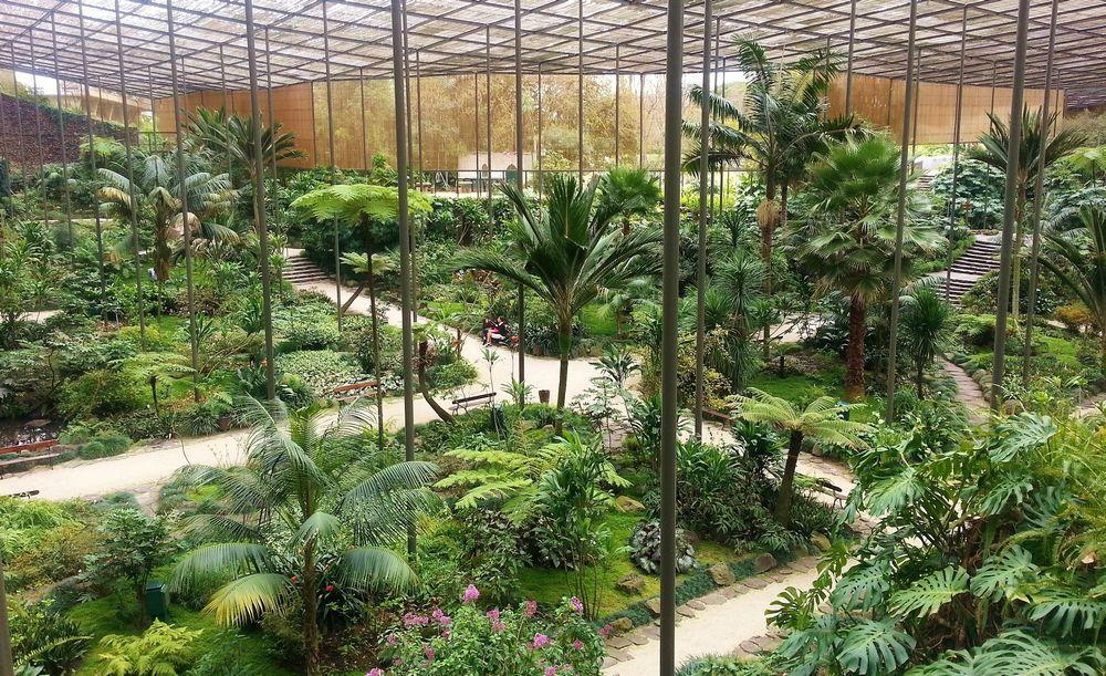 Estufa fria – Un jardin tropical au centre de Lisbonne