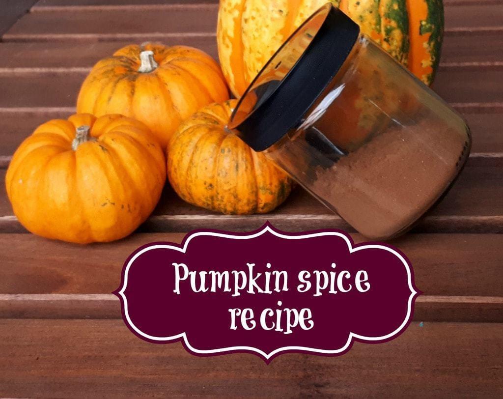 Min pumpkin spice opskrift og alt du bør vide om græskar krydderiet
