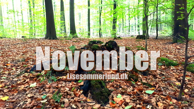 bloggen-november-2017