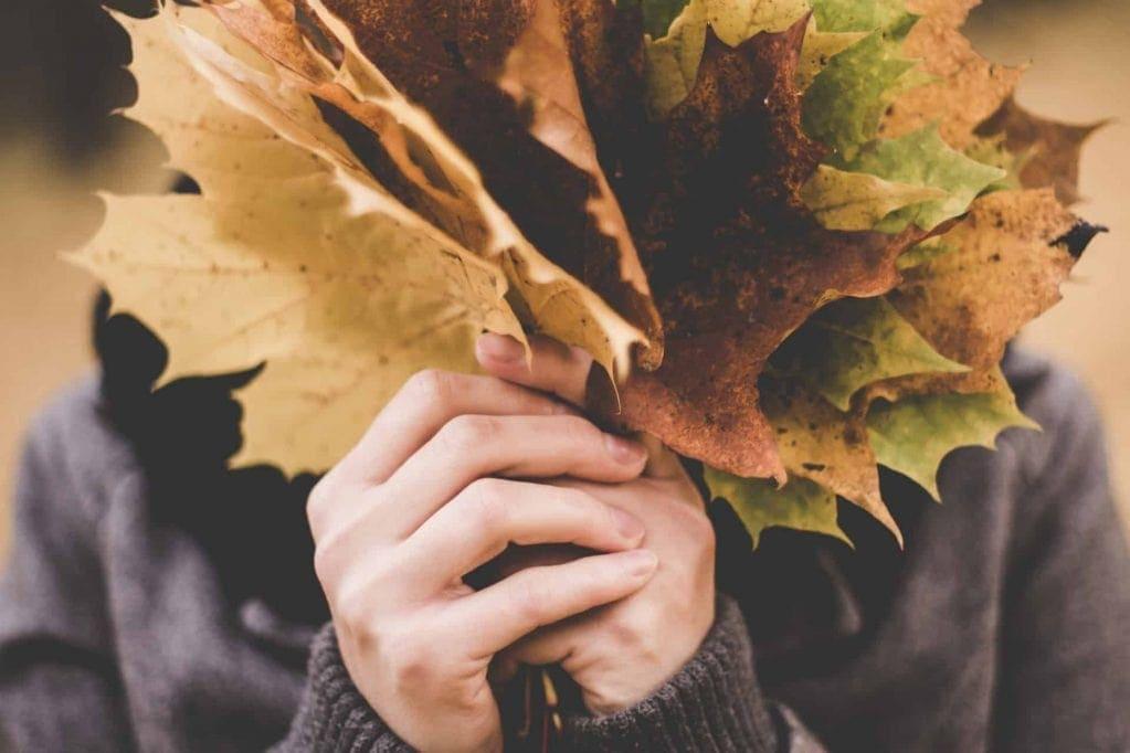 budgetvenlig efterårsferie budgetvenlige efterårs aktiviteter