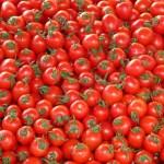 ballen tomaten voetbalvrouw