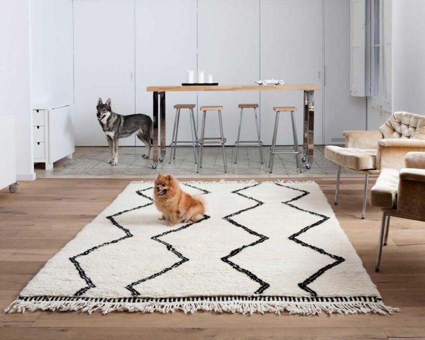 huisdieren-hond-marokkaanse-berber-tapijt-casablanca